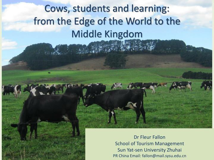 cows students and learning from the edge of the world to the middle kingdom n.