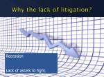 why the lack of litigation2