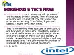indigenous tnc s firms
