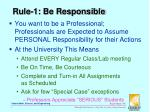 rule 1 be responsible