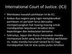 international court of justice icj