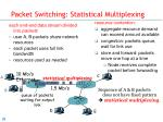 packet switching statistical multiplexing