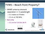 tvws beach front property
