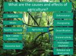 what are the causes and effects of agriculture