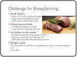 challenge for sheepfarming