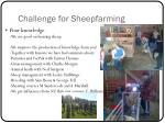 challenge for sheepfarming2