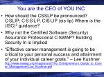 you are the ceo of you inc