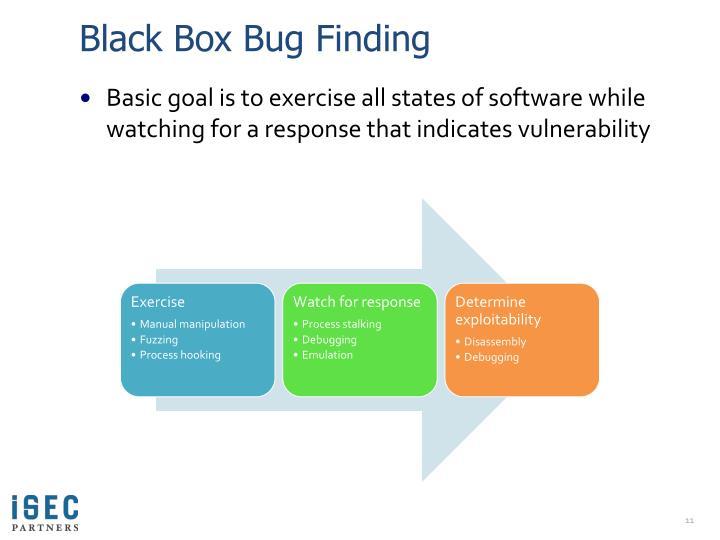 Black Box Bug Finding