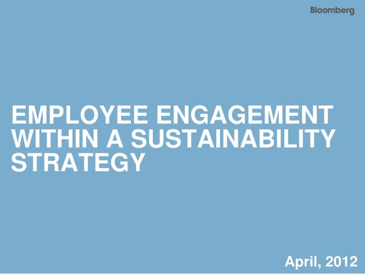 employee engagement within a sustainability strategy n.