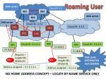 roaming user