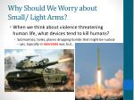 why should we worry about small light arms