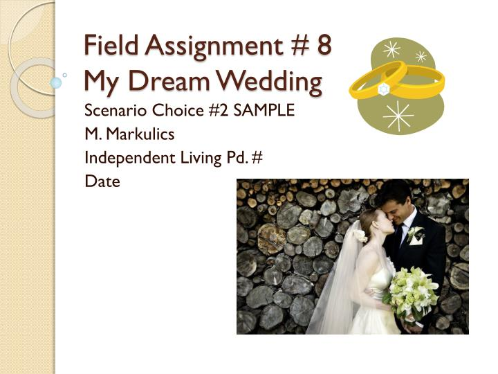 field assignment 8 my dream wedding n.