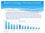 brand strategy introduce brand1