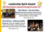 leadership spirit award