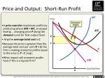 price and output short run profit