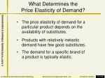 what determines the price elasticity of demand