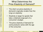 what determines the price elasticity of demand1