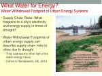 what water for energy water withdrawal footprint of urban energy systems
