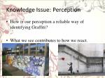 knowledge issue perception