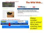 the wild web