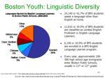 boston youth linguistic diversity