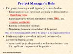 project manager s role