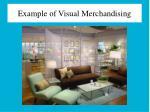 example of visual merchandising