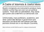 a cadre of islamists useful idiots