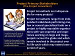 project primary stakeholders the project consultant