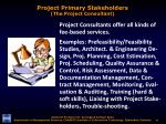 project primary stakeholders the project consultant1