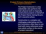 project primary stakeholders the project contractor