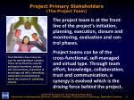 project primary stakeholders the project team