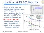 irradiation at psi 300 mev pions