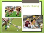 sports hurling