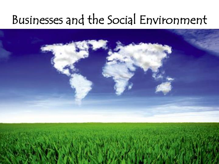 businesses and the social environment n.