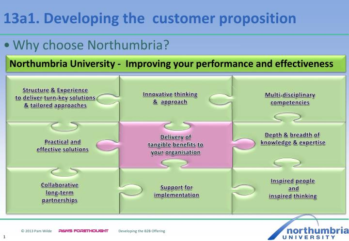 13a1 developing the customer proposition n.