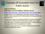 examples 0f innovation from the public sector9