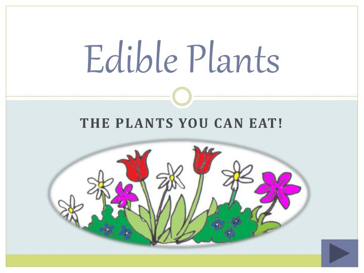 edible plants n.