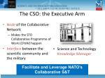 the cso the executive arm
