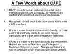 a few words about cape