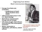 organizing from within black consciousness movement