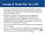 example of action plan for a pdp1