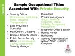 sample occupational titles associated with private security