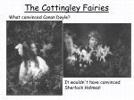 the cottingley fairies
