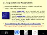 1 1 corporate social responsibility