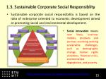 1 3 sustainable corporate social responsiblity