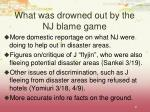 what was drowned out by the nj blame game