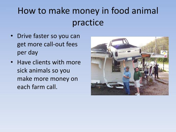 How to make money in food animal practice
