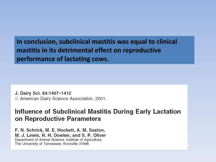 In conclusion, subclinical mastitis was equal to clinical mastitis in its detrimental effect on reproductive performance of lactating cows.