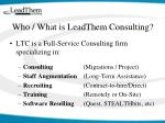 who what is leadthem consulting